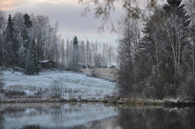 winter-2966168_640 (1)